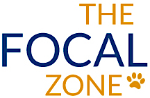 The Focal Zone